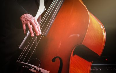 Part of a kontra bass player, available light , high iso shot, shallow depth of field!